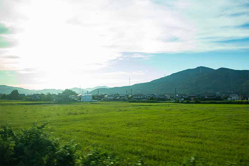 飯田線からの景色