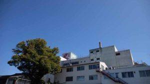 空の青さを知る人よの聖地巡礼場所(矢尾百貨店)