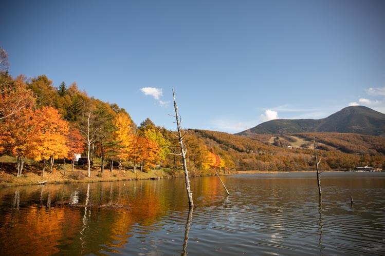 蓼科女神湖