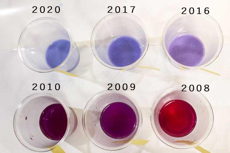 紫キャベツの液性実験