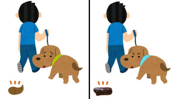 犬の散歩フン