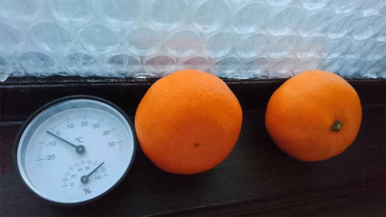 窓際で凍る蜜柑