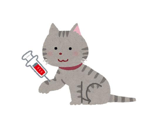 採血を受ける猫