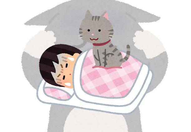猫に乗られて睡眠の質が低下してる人