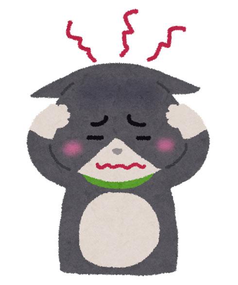 頭痛を起こす猫